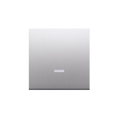Kontakt Simon 54 Premium Stříbrná Jednotná klávesa s očkem pro vypínače/Podsvícené tlačítka, DKW1L/43